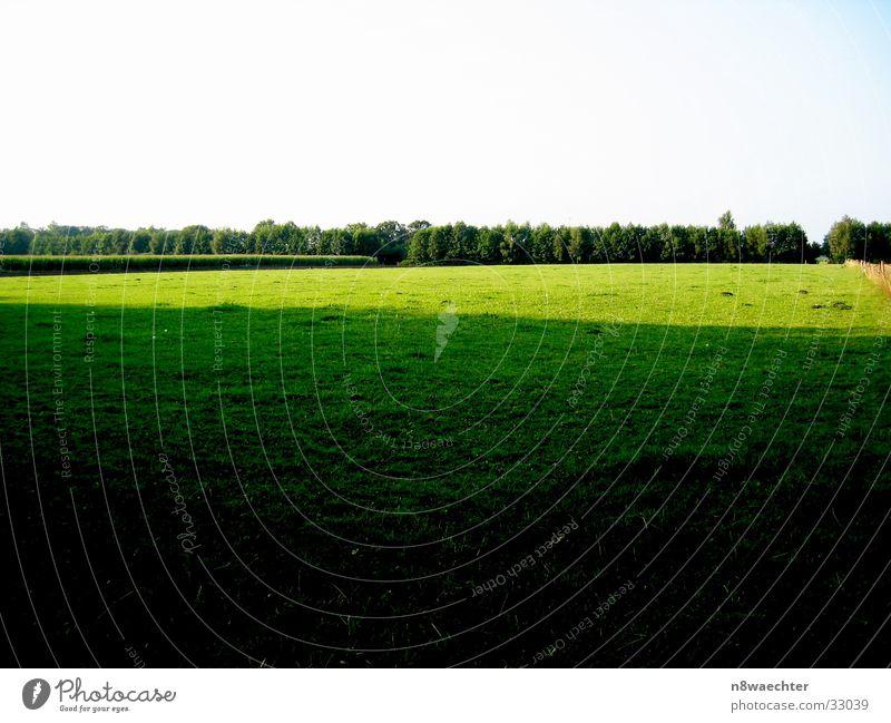 Light and shadow Field Green Yellow Dark Margin of a field Zwillbrocker Venn Intersection Bright containment
