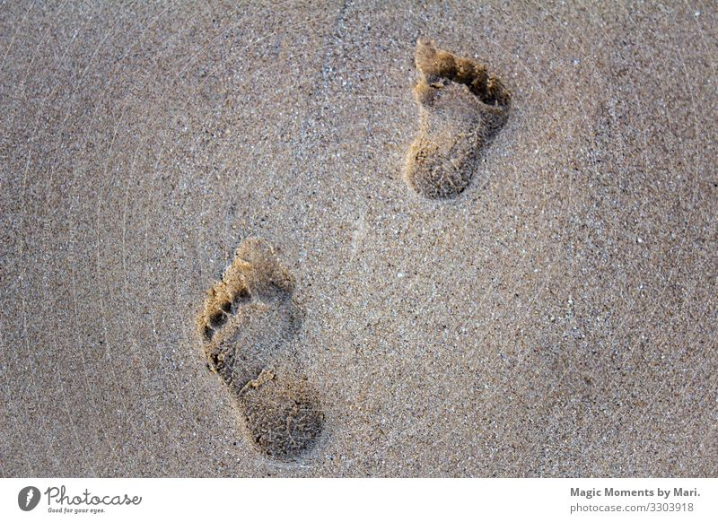 Footsteps in the sand Vacation & Travel Movement Beautiful Feet Sand Beach Summer Colour photo