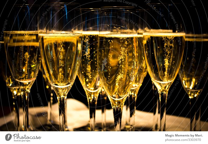 The wedding champagne Beverage Cold drink Champagne Glittering Happy Love Wedding Drinking Colour photo