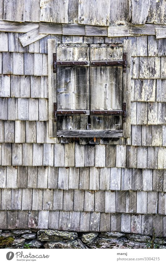 Storm-proof Hut Building Wall (barrier) Wall (building) Facade Window Shutter Roofing tile shingle wall Wood Old Broken Natural Dream Sadness Grief Pain