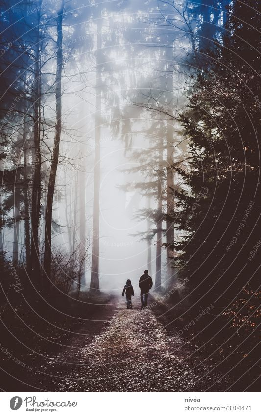 Walk father and son in the misty forest Trip Adventure Far-off places Freedom Human being Masculine Boy (child) Father Adults Family & Relations Infancy 2