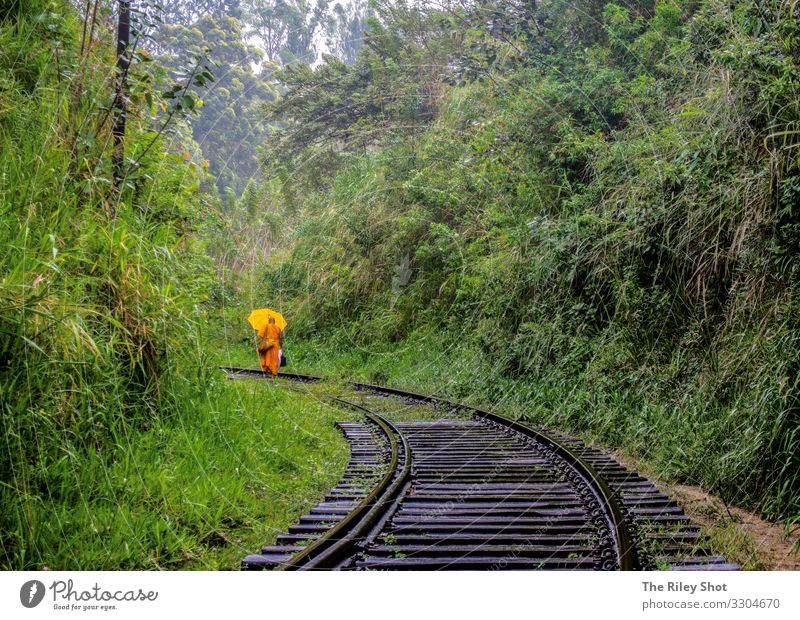 A Monk walks along the Ella Trainlines, Sri Lanka. Beautiful Vacation & Travel Tourism Trip Woman Adults Man Landscape Grass Virgin forest Transport Street