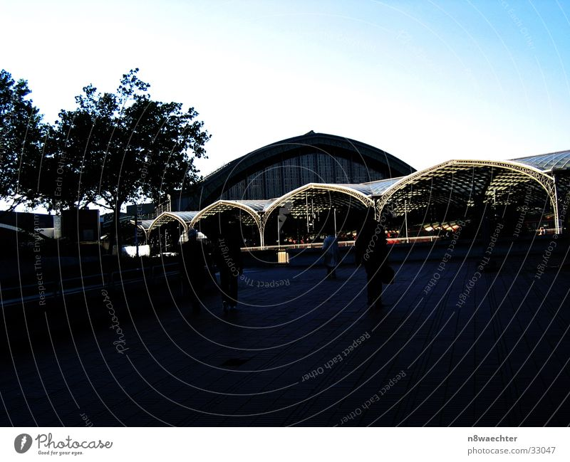 Human being Sky Dark Building Architecture Roof Train station Domed roof Honey-comb