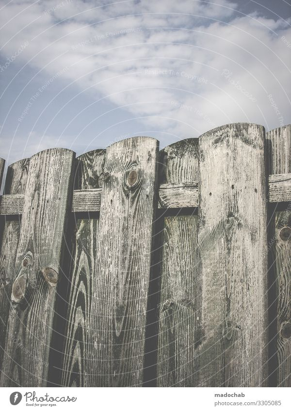 wooden fence Fence Border Freedom Deserted Protection Captured Safety Barrier Colour photo Longing