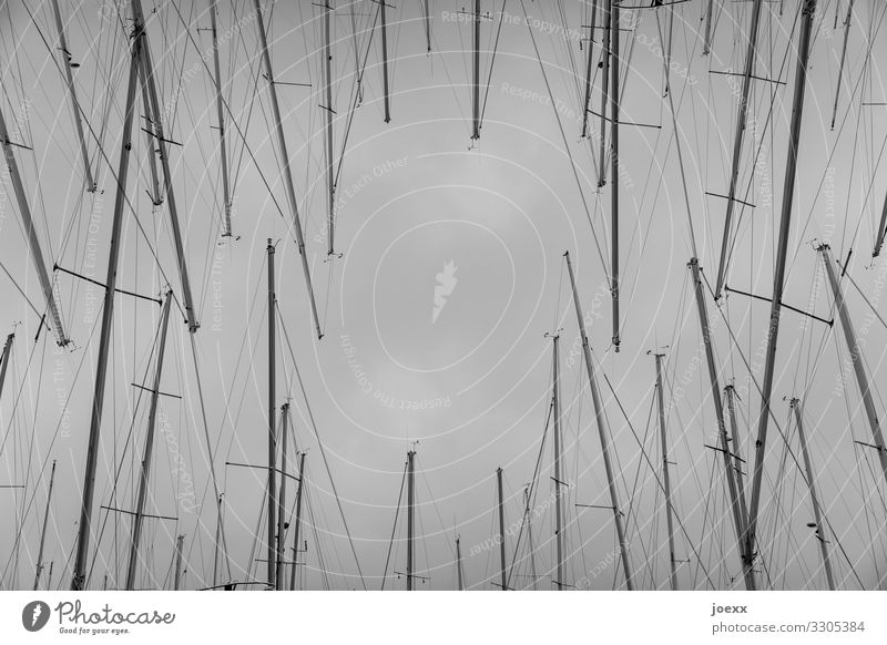 Calm Gray Above Leisure and hobbies Fantastic Tall Infinity Long Under Chaos Maritime Sailing Bizarre