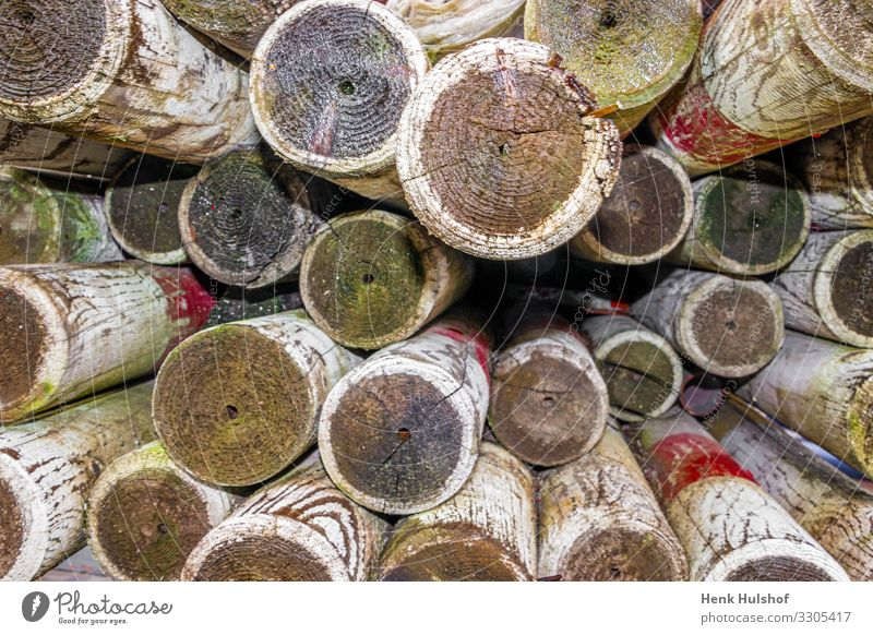 a pile of wooden piles painted in white and red for safety bordering in industrial areas abstract background brown circle color cut detail handmade industry log