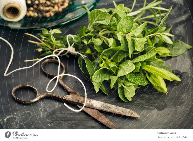 herb bouquet Food Herbs and spices Rosemary Oregano Bay leaf Mint Thyme Pepper Nutrition Organic produce Vegetarian diet Italian Food Scissors Sewing thread