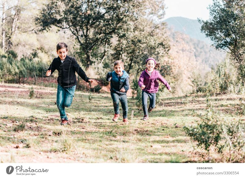 Three cute kids running throw a meadow Child Human being Vacation & Travel Nature Youth (Young adults) Summer Blue Beautiful Green Tree Joy Forest Girl