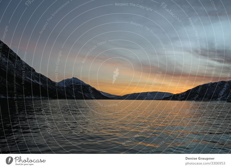 in the fjords of Norway at sunset Design Vacation & Travel Summer Environment Nature Landscape Water Climate Climate change Weather Beautiful weather Fjord