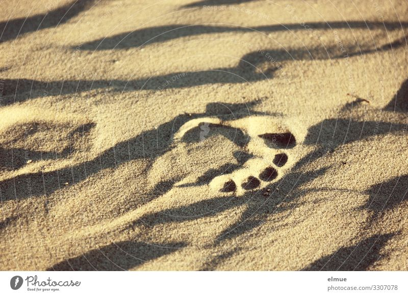Vacation & Travel Nature Naked Summer Relaxation Joy Beach Healthy Lifestyle Yellow Funny Movement Happy Sand Design Leisure and hobbies