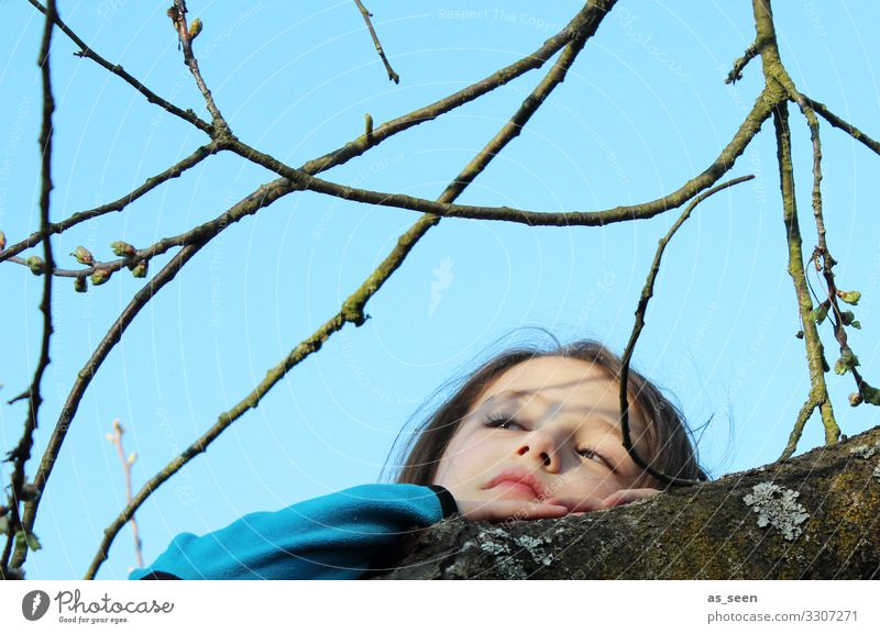 Child Sky Nature Blue Tree Relaxation Girl Face Life Warmth Environment Spring Natural Garden Brown Contentment