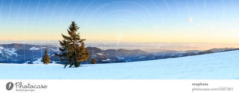 Evening mood at the wintry summit of the Belchen, sunset, view in south direction mountain Peak Sky Landscape Nature evening sky evening light evening mood