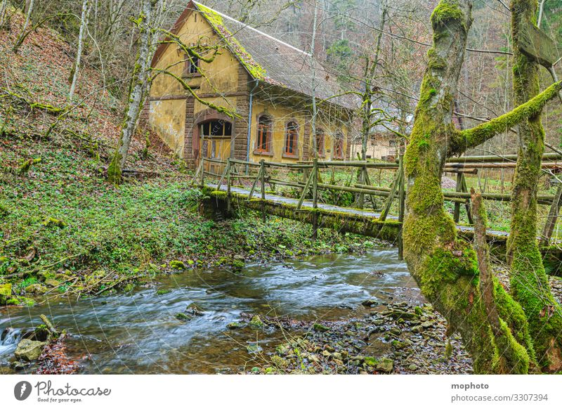 castle mill, nature friend house, Gauchach gorge Old built Landscape Nature tree leaves bridge burgmühle huts Germany out River Riverbed River course also