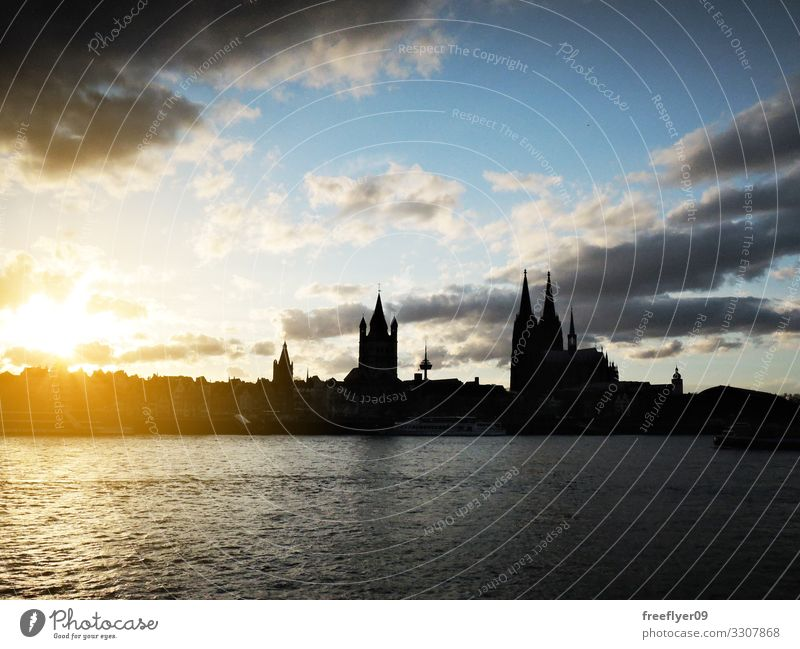Silhouette of the Cologne Cathedral and its surrounding Sun Warmth Germany Skyline Church City hall Building Tall urban cityscape Rhine cupola panorama