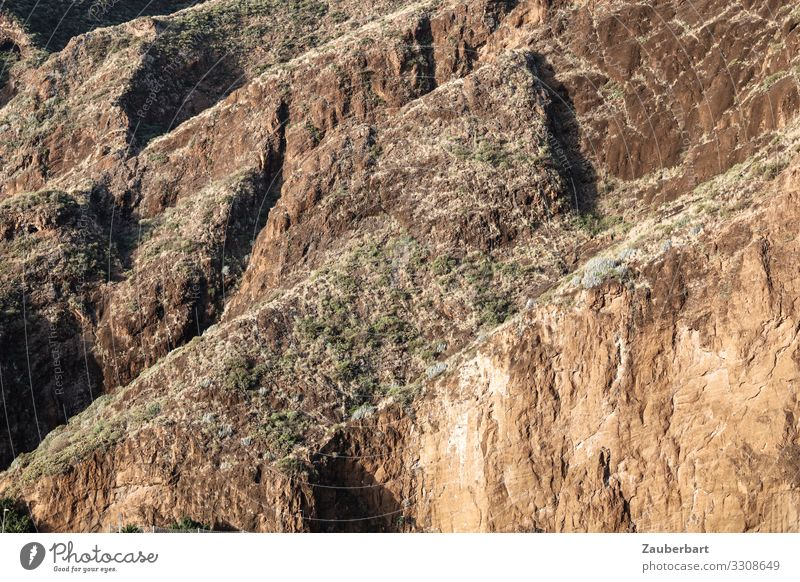 upward Vacation & Travel Mountain Nature Landscape Rock La Palma Canaries Hiking Brown Self-confident Respect Environment Steep Wall of rock Steep face Go up