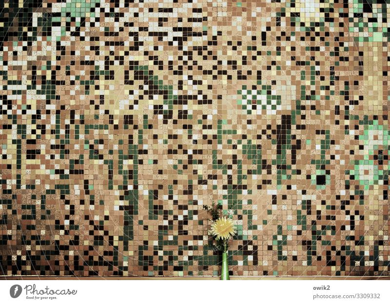 Illustrative material Art Work of art Mosaic Pixel mosaic tiles Flower Flower vase Artificial flowers Wall (barrier) Wall (building) Retro Many Crazy Wild Brown