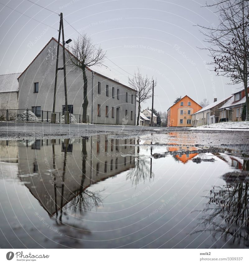 Water Tree House (Residential Structure) Winter Window Street Snow Building Germany Orange Gray Ice Air Beautiful weather Wet Roof