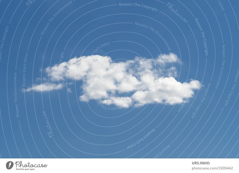 a white cloud against a blue sky Elements Air Sky Sky only Clouds Climate Weather Beautiful weather Movement Authentic Blue White Longing Wanderlust Loneliness