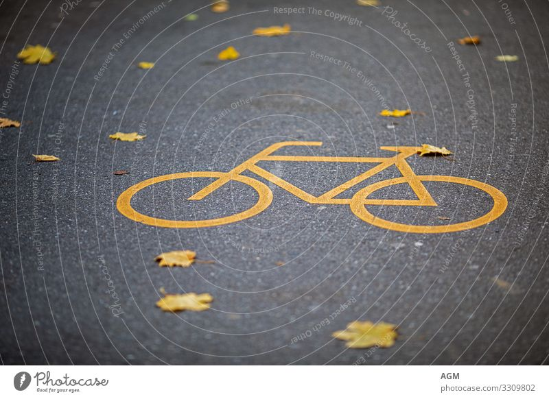 yellow and yellow on the road Lifestyle Healthy Athletic Fitness Well-being Relaxation Leisure and hobbies Sports Cycling Bicycle Environment Climate change