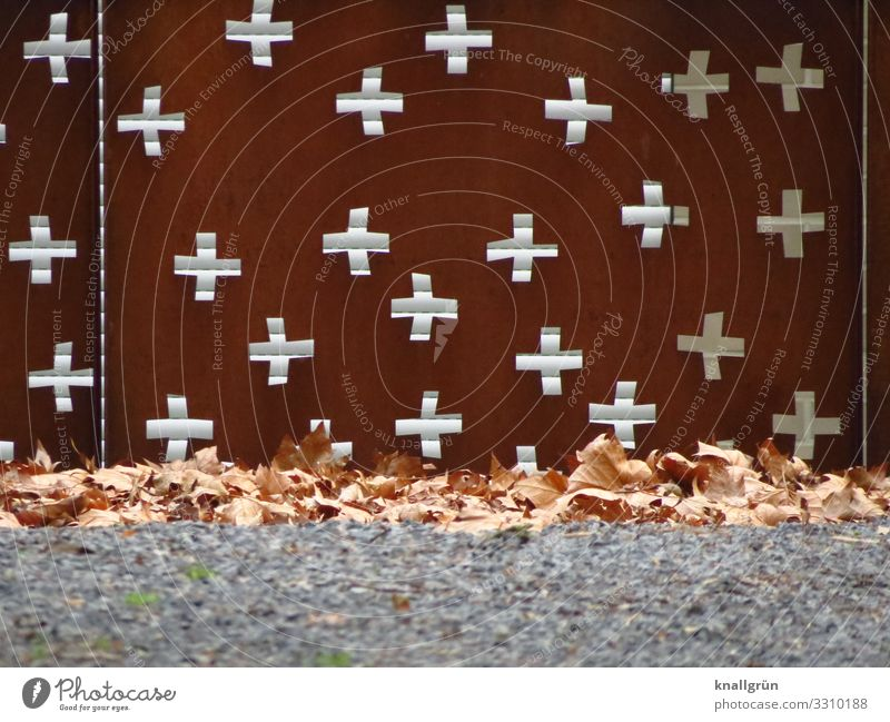 churchyard Nature Grass Leaf Fence Sign Ornament Crucifix Brown Green Religion and faith Protection Town Rust Metalware Winter Limp Colour photo Exterior shot