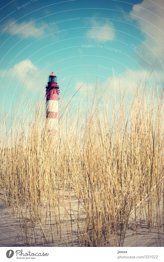 OFF Landscape Sky Clouds Summer Hill Island Amrum Dune Marram grass Lighthouse Old Large Tall Blue Brown Yellow Red White Vacation & Travel Colour photo