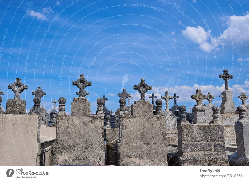 Spanish Cemetery Hallowe'en Sky Fog Tree Stone Old Dark Creepy Black Death Fear Horror Religion and faith background Grave gothic tombstone mystery Dusk haunted