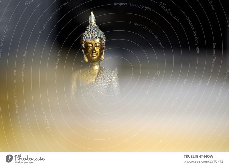 From the darkness and veiled depth of consciousness rises a gilded sculpture with the well-known friendly smiling face of Buddha Buddha statue Buddha sculpture