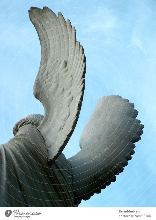 Angel from behind Statue Sculpture Wing Backwards Stone