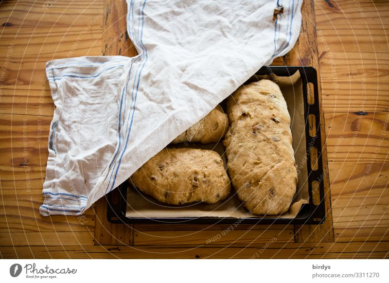 Stollen before baking Dough Baked goods Bread Nutrition Baking tray Table Wooden table Metal Rag Fragrance Authentic Delicious Positive Brown Yellow White