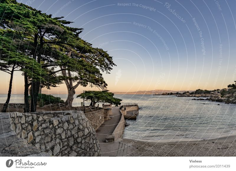 In the silence lies....... Vacation & Travel Tourism Far-off places Summer Beach Ocean Waves Water Relaxation California Monterey 17 mile drive Carmel Highlands