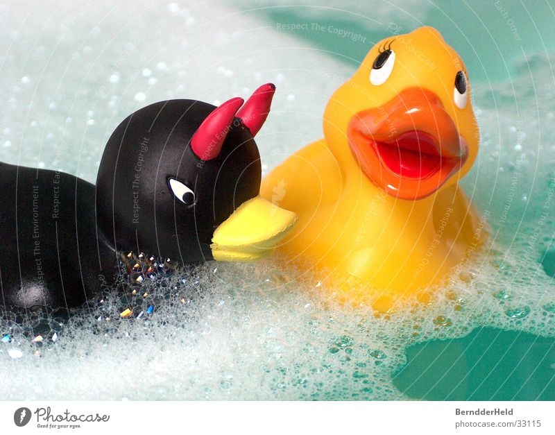 ducks Squeak duck Bathtub Foam Bathroom Playing Leisure and hobbies Duck bad duck Water Float in the water Swimming & Bathing
