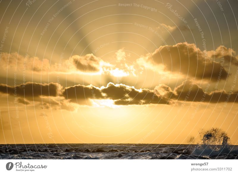 Evening sun with wave splashes right Nature Landscape Air Water Sky Clouds Sun Sunrise Sunset Sunlight Autumn Beautiful weather Waves Baltic Sea Maritime