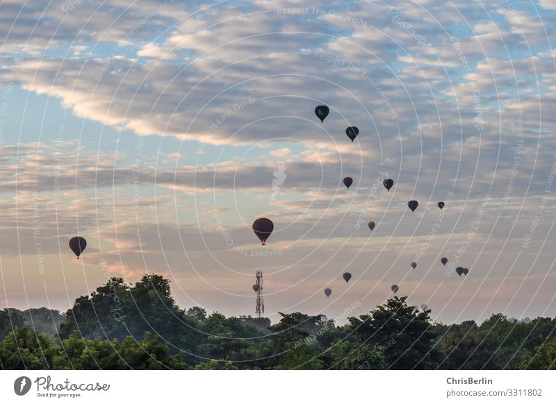 Balloons in the morning Adventure Far-off places Freedom Balloon flight Landscape Sky Clouds Climate Beautiful weather Hot Air Balloon Esthetic Contentment