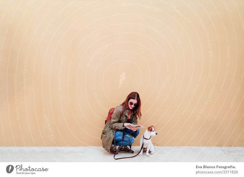 woman and dog at the city, yellow background. woman reading a map. travel and tourism concept urban wall jack russell pet cute small lovely adorable caucasian