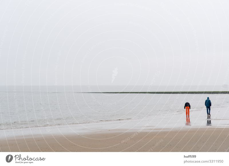 two people on the beach of Baltrum in rain and storm Trip Beach Human being Couple Partner 2 18 - 30 years Youth (Young adults) Adults Landscape Sand Water Sky
