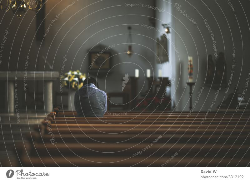 Woman kneels in pew and prays Church Belief Hope Anonymous kneeling Rear view Kneel church pews Religion and faith Interior shot Religion & Faith Calm