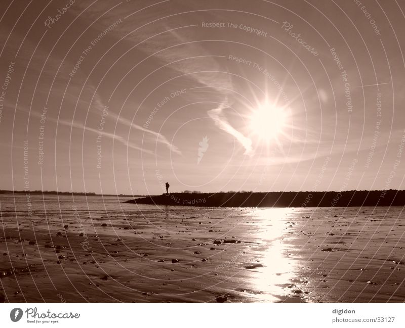 lonely sailor Seaman Beach Man Water Sun Sepia