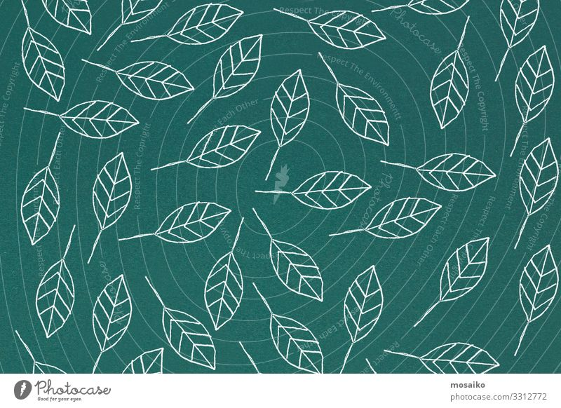 hand drawn petals on green background Summer Plant Beautiful Green White Leaf Joy Lifestyle Blossom Natural Style Design Contentment Decoration Retro