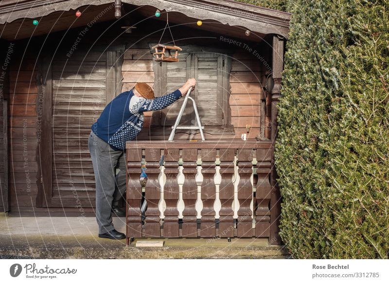 Old man to ladder Living or residing Flat (apartment) Garden Gardenhouse Birdhouse Ladder Masculine Male senior Man Senior citizen Life 1 Human being