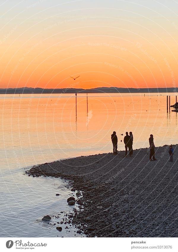 talk am lake Human being Group Nature Landscape Elements Water Sky Winter Beautiful weather Lake To enjoy Communicate To talk Looking Serene Horizon