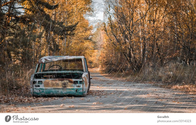 road with a broken car in Chernobyl Ukraine Sky Vacation & Travel Old Plant Colour Tree Leaf Street Autumn Tourism Trip Car Transport Dangerous Threat Seasons