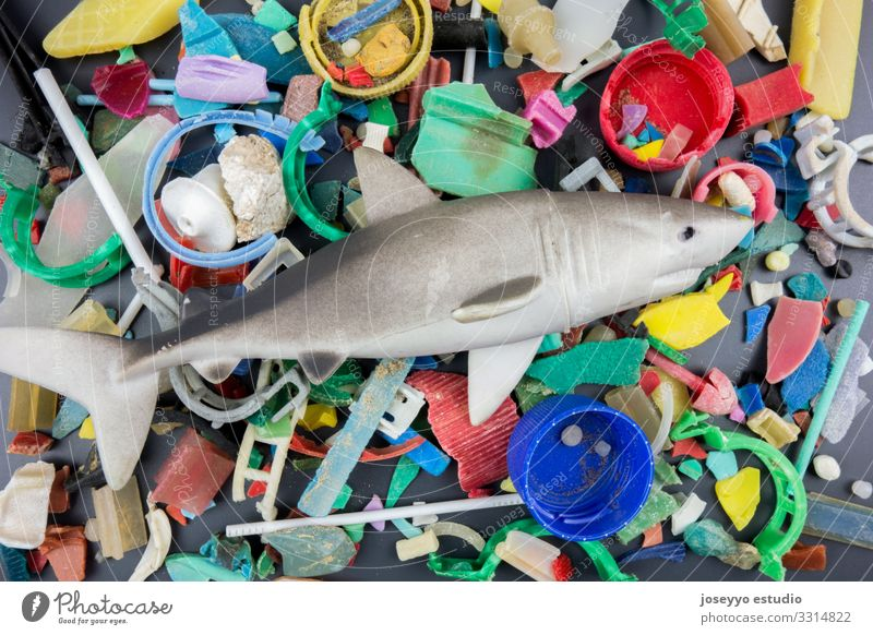 Toy shark over micro plastics collected on the beach. Nature Water Ocean Beach Environment Coast Small Earth Free Dirty Fish Cleaning Plastic Trash