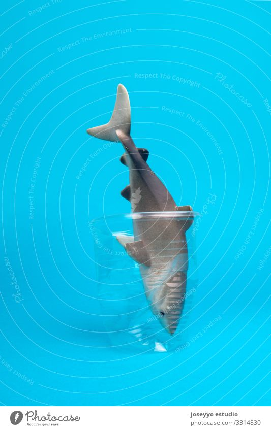 Toy shark inside a plastic cup on blue background. Beach Ocean Animal Aquatic Awareness Blue Bottle Coast Environmental pollution damage Earth Ecological Fish