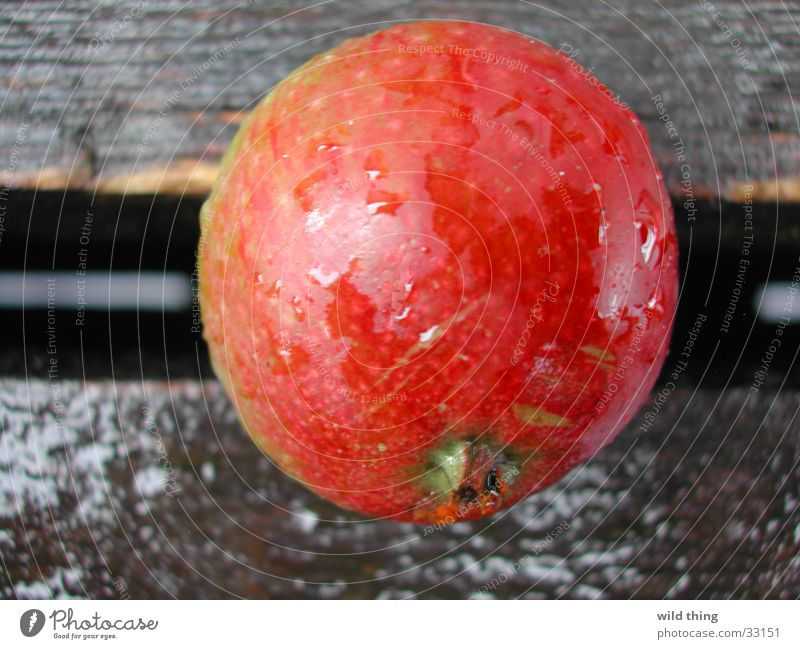 appel on terras Healthy appeal fruit appelboom buiten round