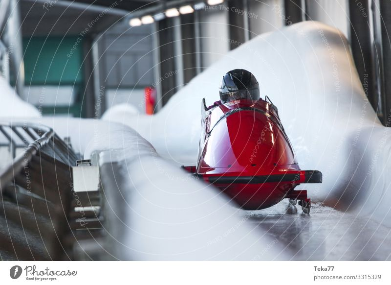 Human being Winter Sports Ice Esthetic Adventure Winter sports Bobsleigh