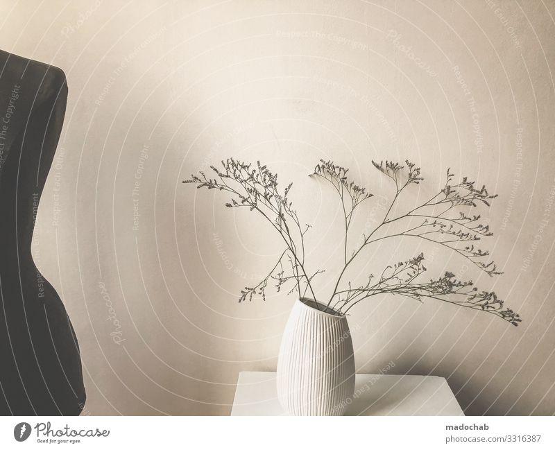 Plant Beautiful Flower Relaxation Lifestyle Interior design Style Living or residing Design Flat (apartment) Contentment Decoration Body Elegant Idyll Bushes