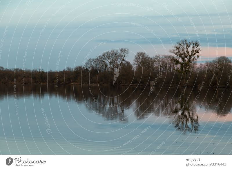 Sky Nature Blue Landscape Calm Forest Cold Sadness Lake Idyll Climate Grief Lakeside Dusk Footbridge Concern