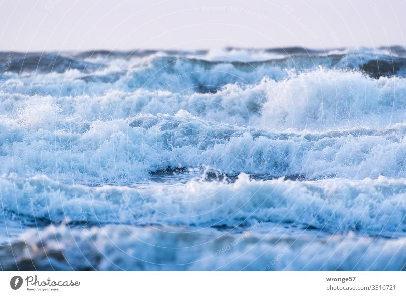 Wave crests before Wustrow Nature Elements Air Water Sky Autumn Storm Gale Waves Baltic Sea Romp Threat Wild Blue Undulation Crest of the wave Wavy line Ocean