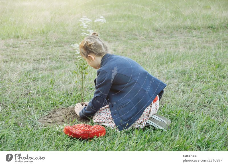 girl plants a flower tree in the middle of a meadow Child Girl Grass Meadow Flower Meadow flower bury Gardening Nature Summer Plant Spring Exterior shot