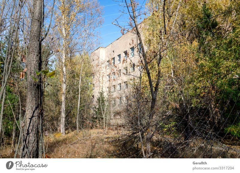 famous place hospital in an abandoned infected city of Chernobyl Medication Vacation & Travel Tourism Trip Hospital Plant Autumn Tree Building Threat Disaster